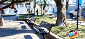Prefeitura inicia plantio de gramas na Praça Geraldo Costa