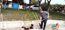 Vaqueli prestigia inicio do plantio de 800 mudas no município