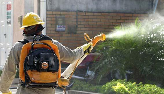 Resultado de imagem para combate a dengue