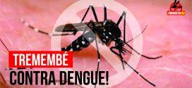 Tremembé registra queda drástica em casos de dengue em 2017