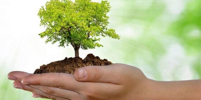 SAMA desenvolve banco de dados sobre ações ambientais de 2018